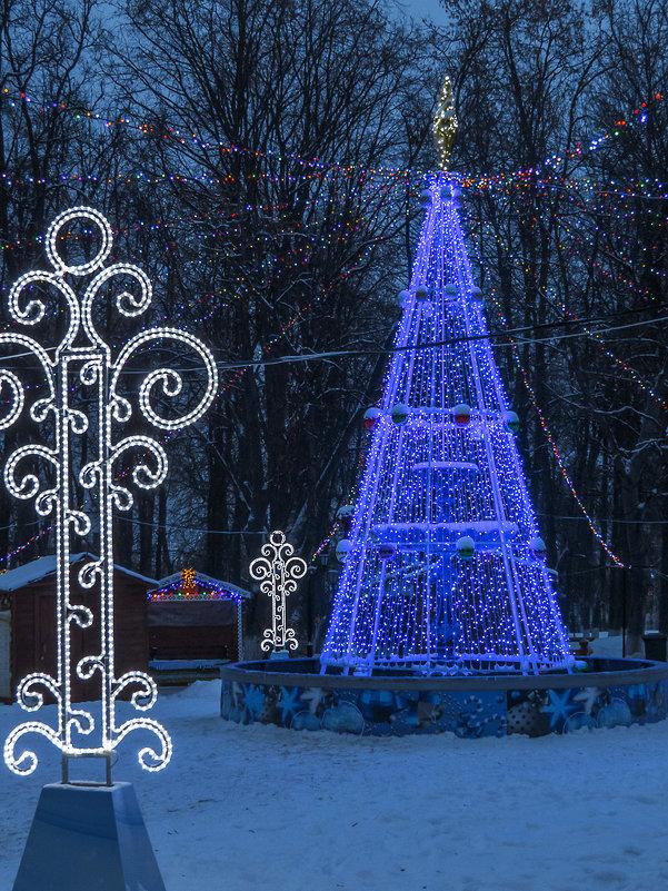 В парке Владимира - Сергей Цветков