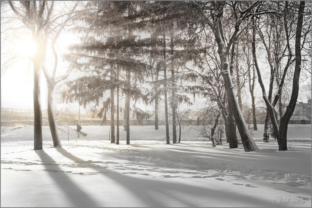 Мороз и солнце - Валентин Цапков