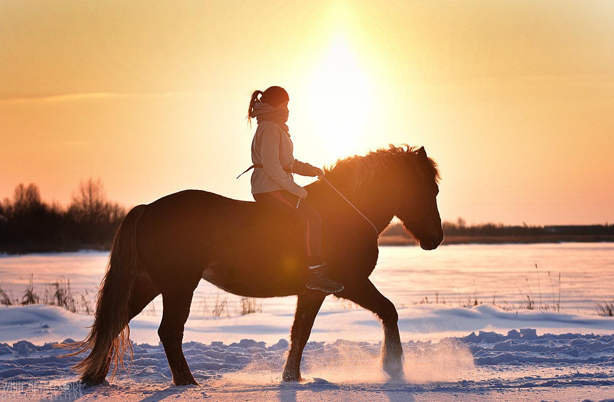 Зимнее тепло - Диана