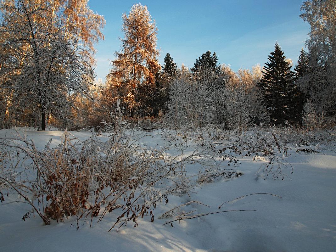 Тёплым солнечным деньком... - Александр Попов