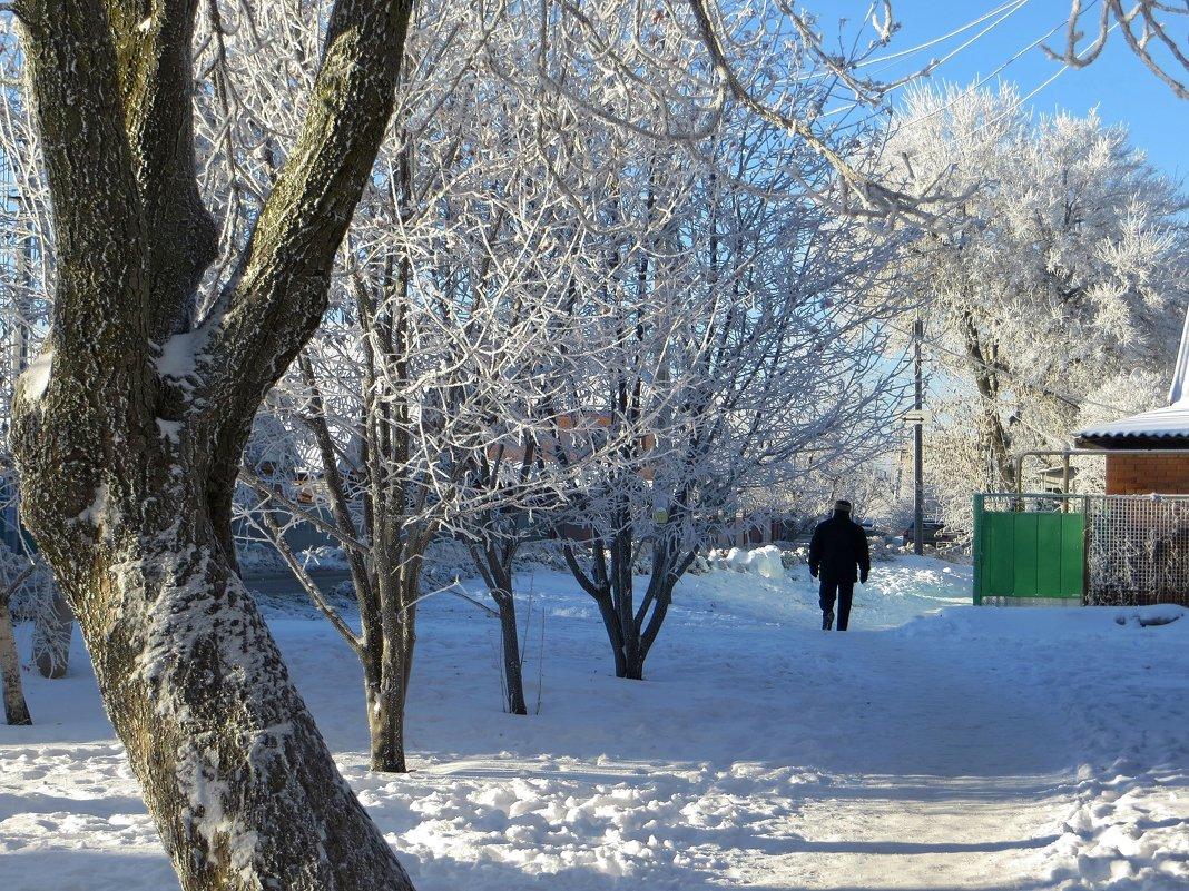Вот она - зима! - Татьяна Смоляниченко