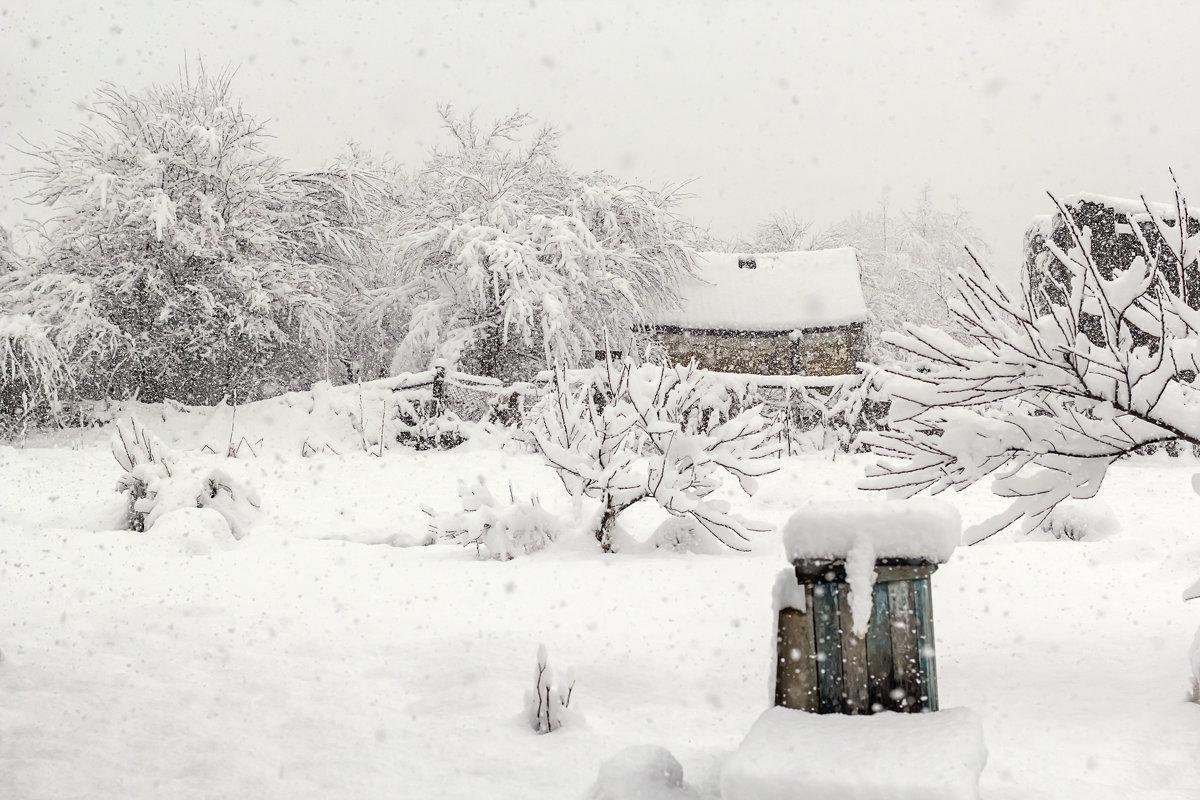 Зима в деревне - Елена Васильева