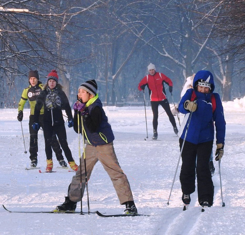 Лыжники - Александр Михайлов