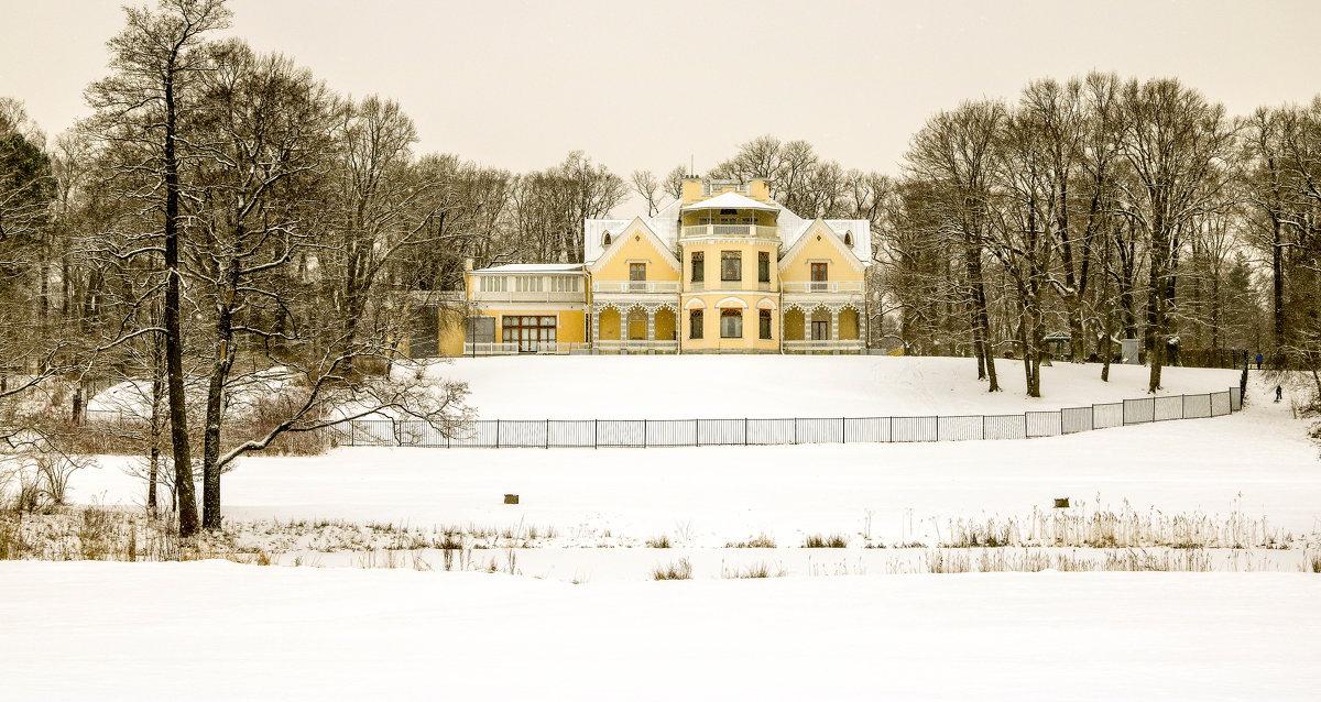 Зима в парке - Петр