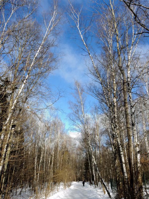 Какое небо голубое - marmorozov Морозова