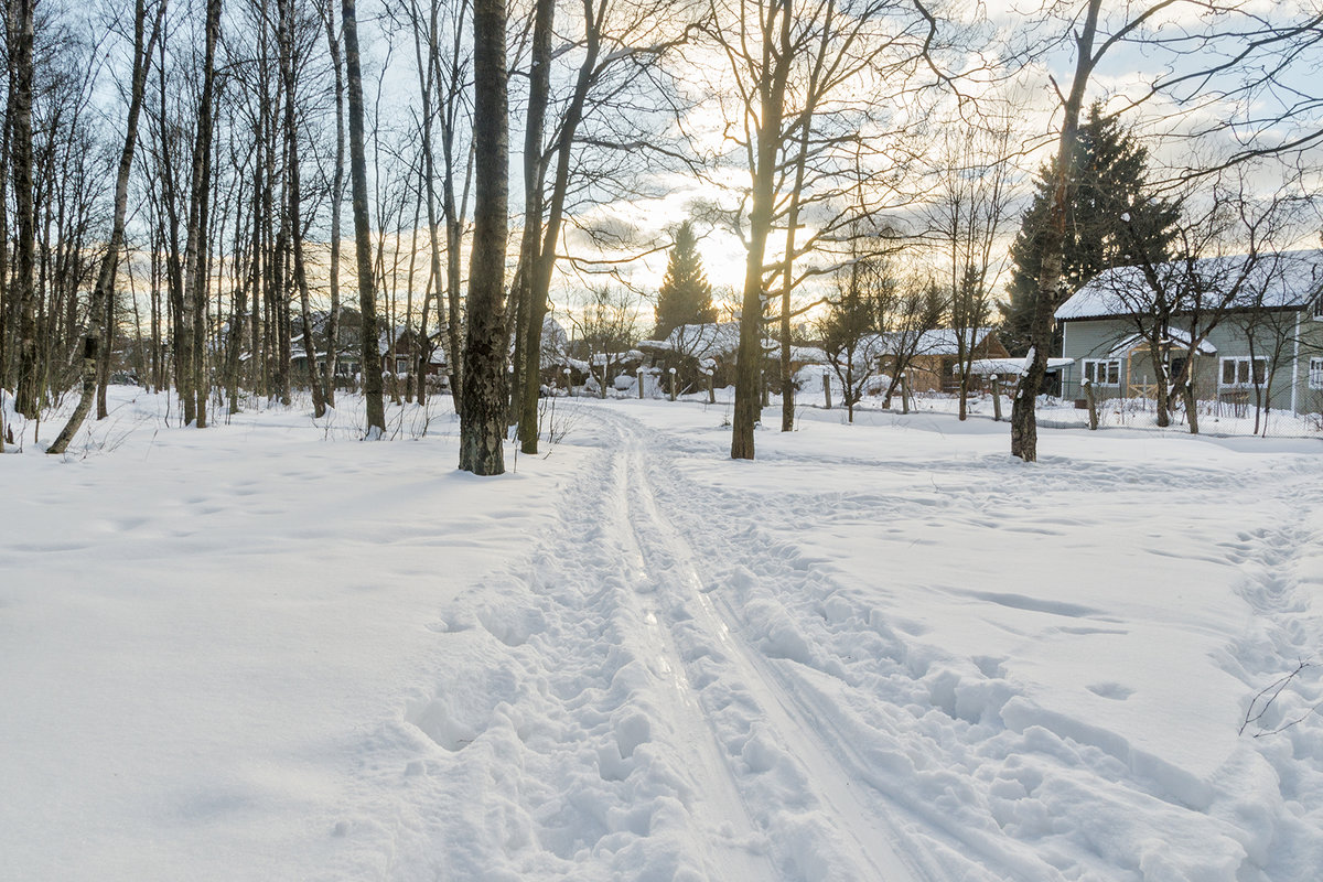 Лыжня - Ирина Шарапова