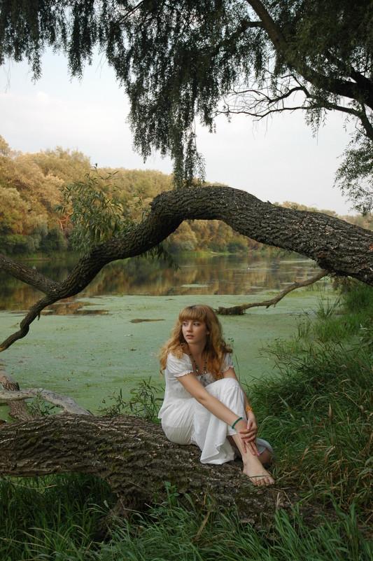На дереве - Erin Завгородняя
