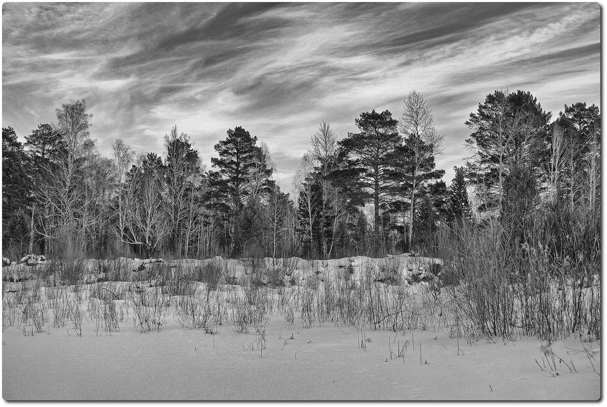 Облики леса - Евгений Карский