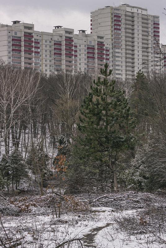 город наступает - Геннадий Свистов