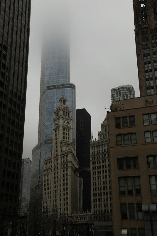 Chicago - Максим Тураев