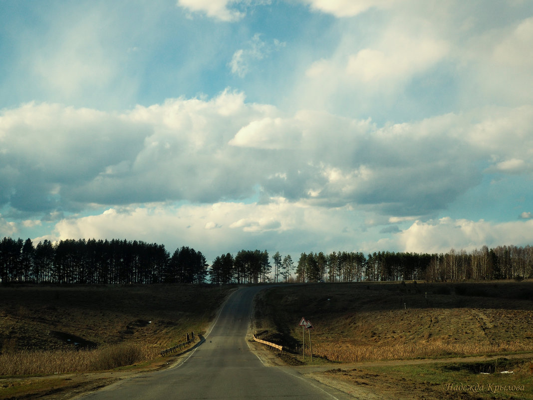 Дорога в Дивеево - Надежда Крылова