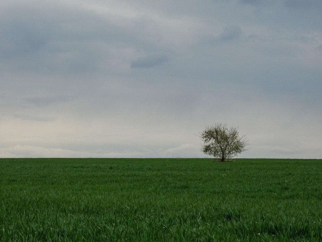 Одиночество или независимость и свобода? - Васильевич .