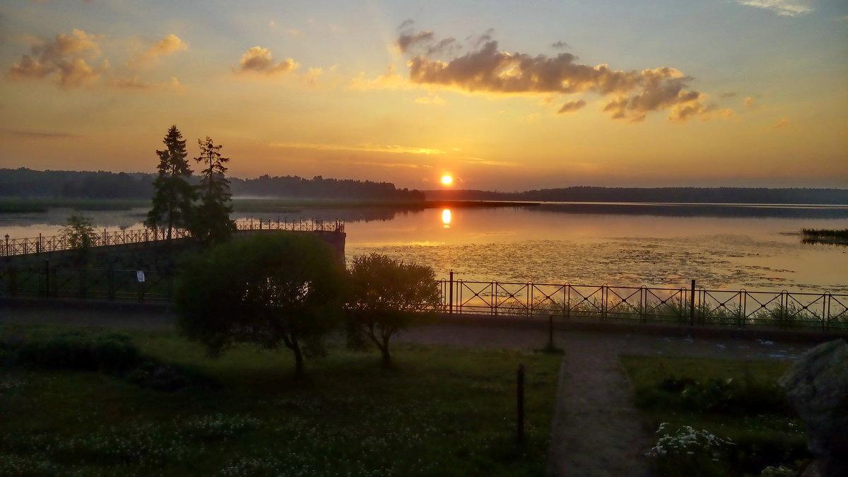 Нежно-розовый рассвет, утро раннее... - Светлана Петошина