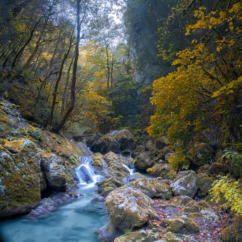 Абхазия , Мерхеульский каньон . - Александр Криулин