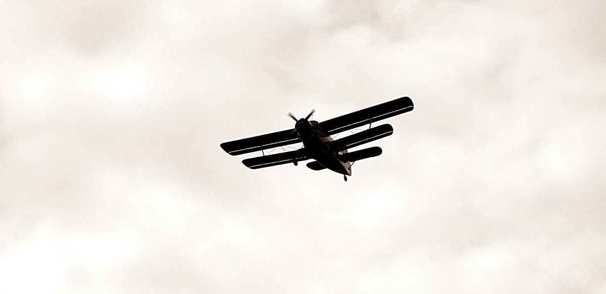 Ан-2 в полёте - Владимир Болдырев