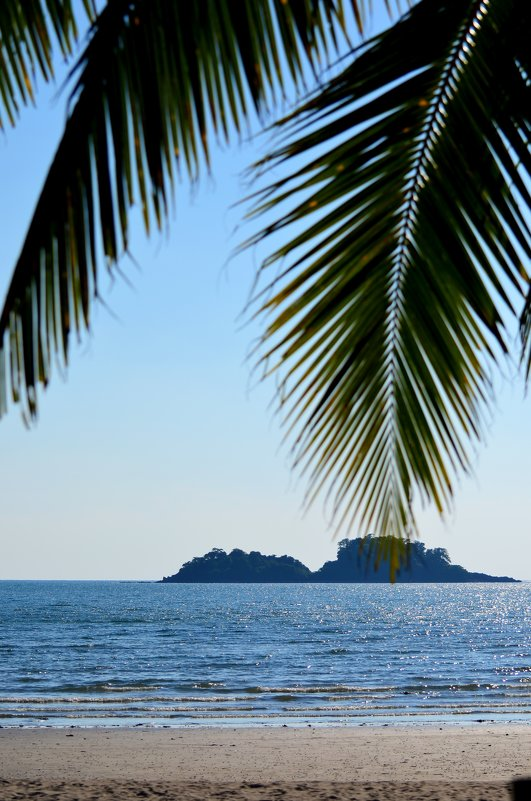 Тропические острова - Дмитрий Боргер