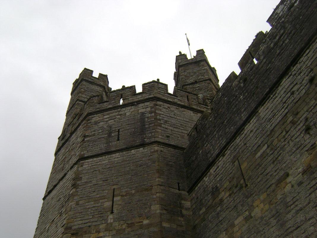 Замок Карнарвон. Уэльс - Марина Домосилецкая