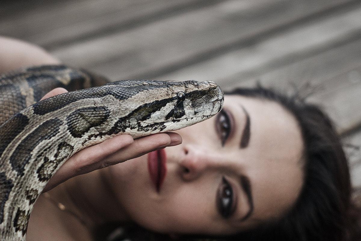 Девушка со змеей - Елена Логачева