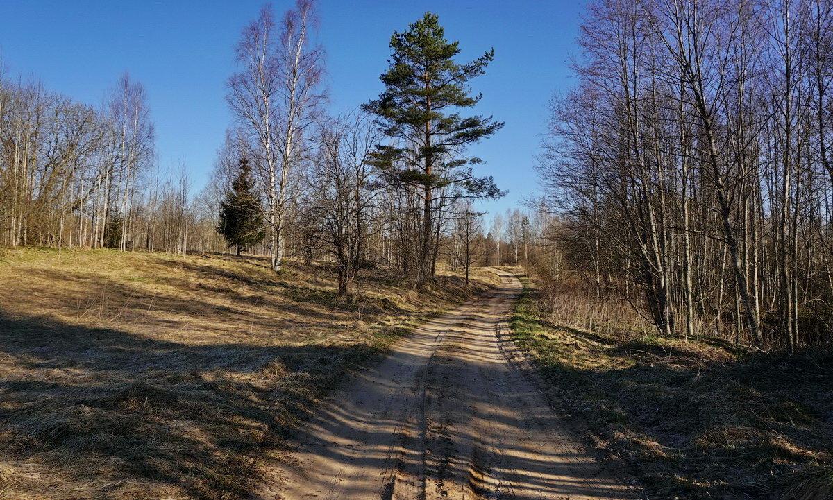 Утренняя весенняя дорога - Владимир Гилясев
