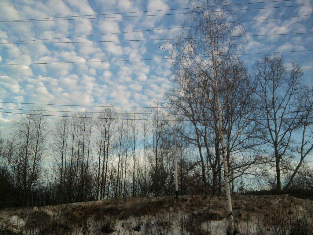 Снег тает. - Марина Китаева