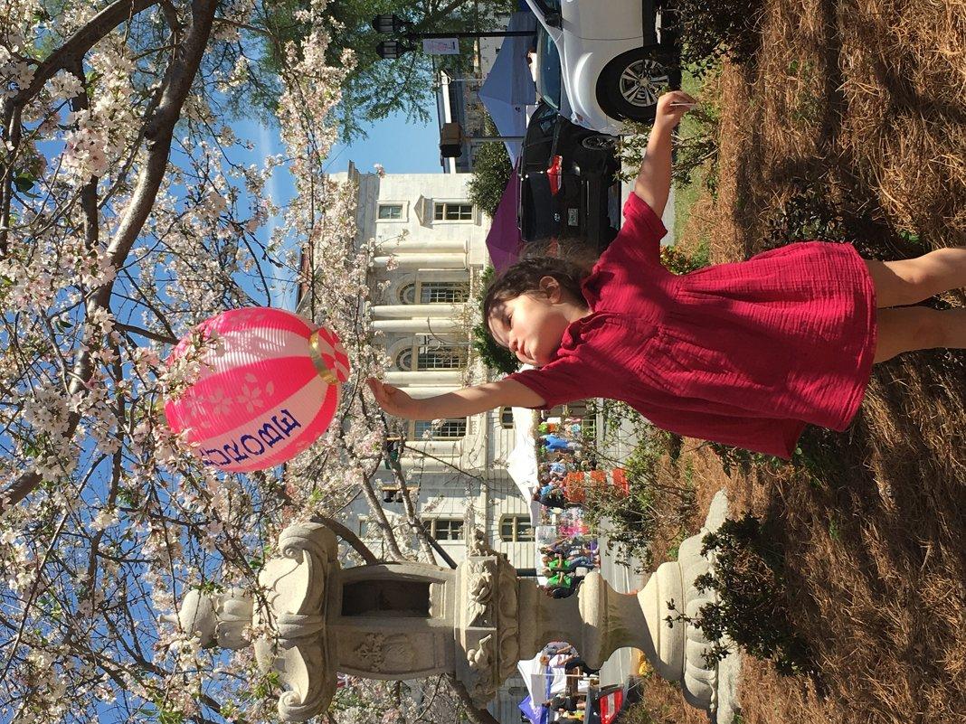 Cherry blossom - Майя Бастрикова