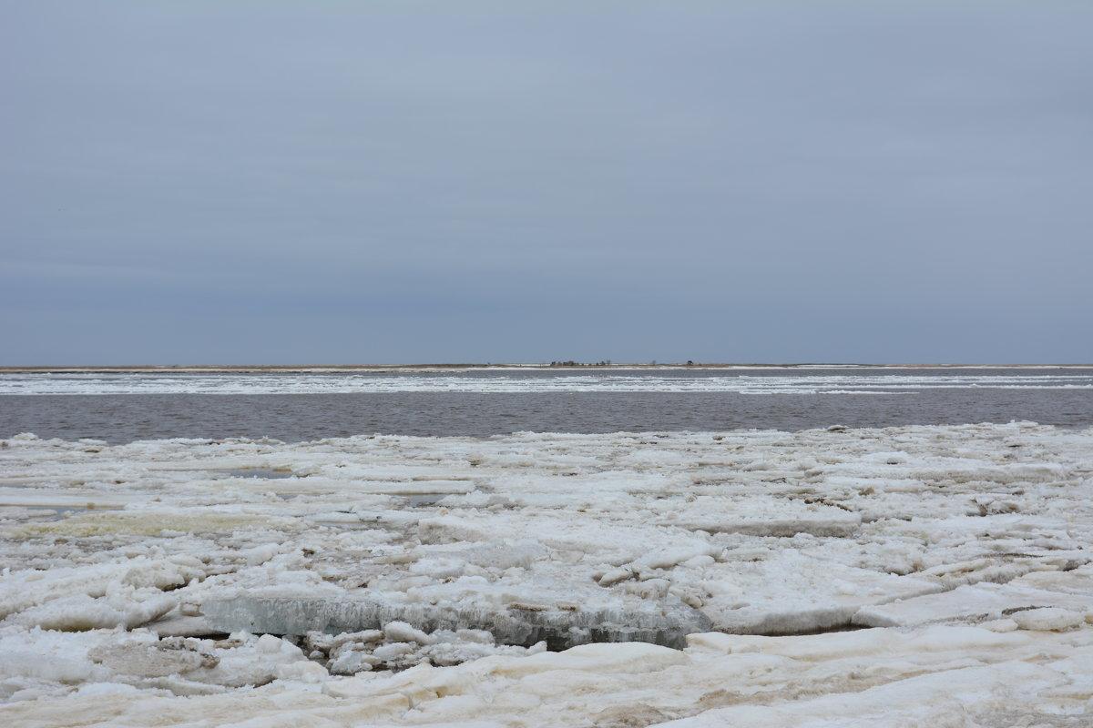 Белое море ледоход. Северодвинск, о.Ягры. - Михаил Поскотинов