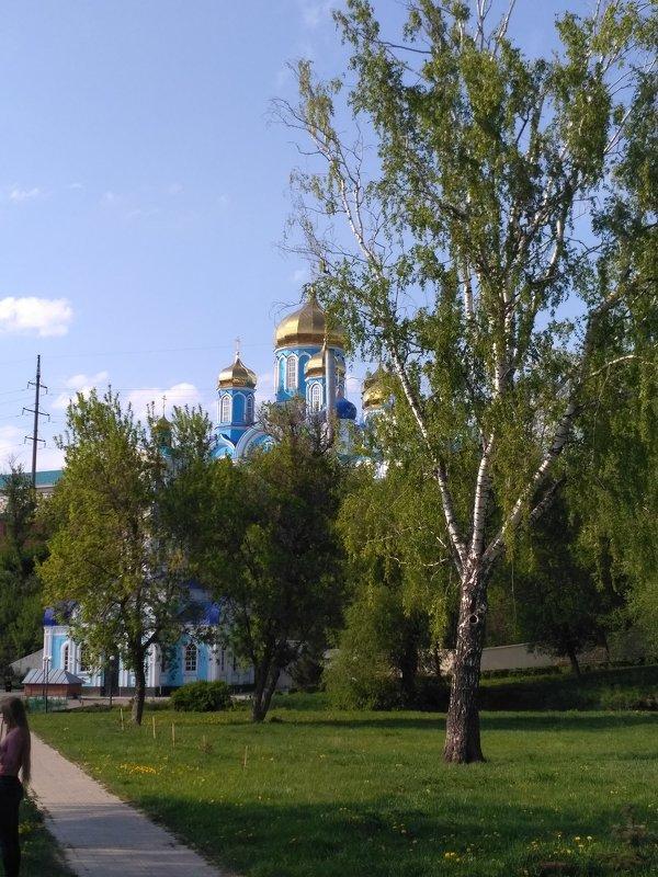 Задонс - Elena Dubinina