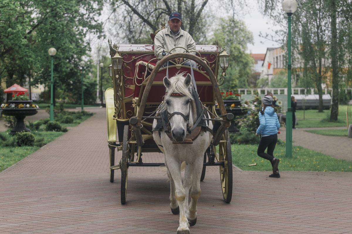прогулки по Бресту - Константин Король
