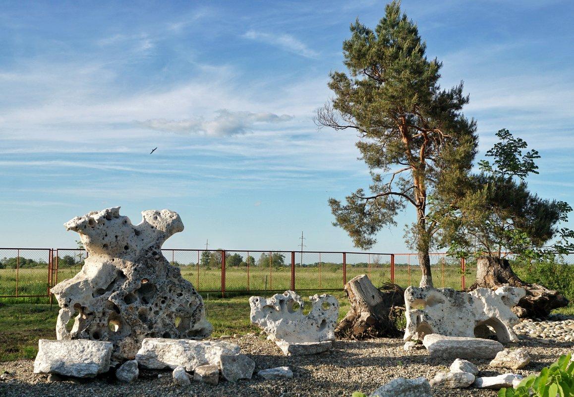 Сад камней в сельской школе в Лабинском районе Краснодарского края - Андрей Майоров