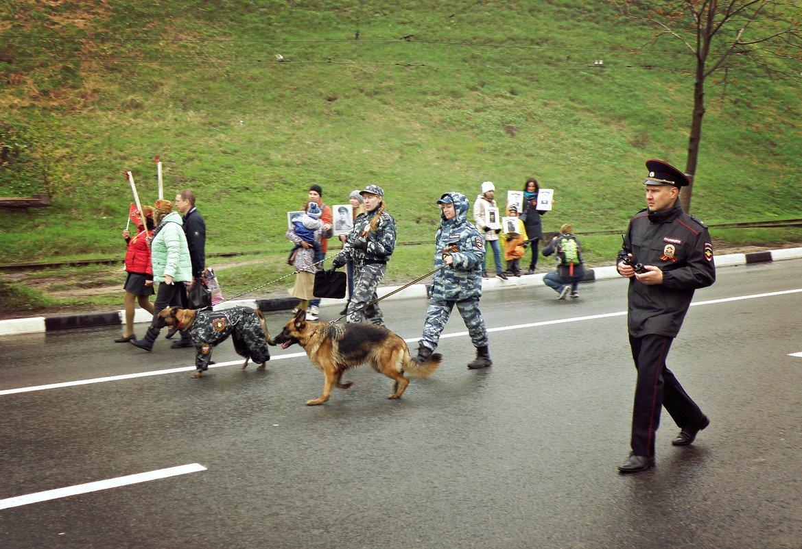 На страже порядка - Андрей Головкин