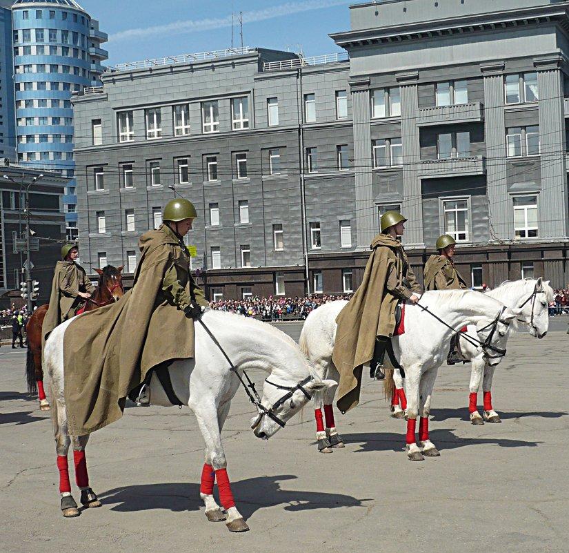 Волнуются перед парадом не только люди - натальябонд бондаренко
