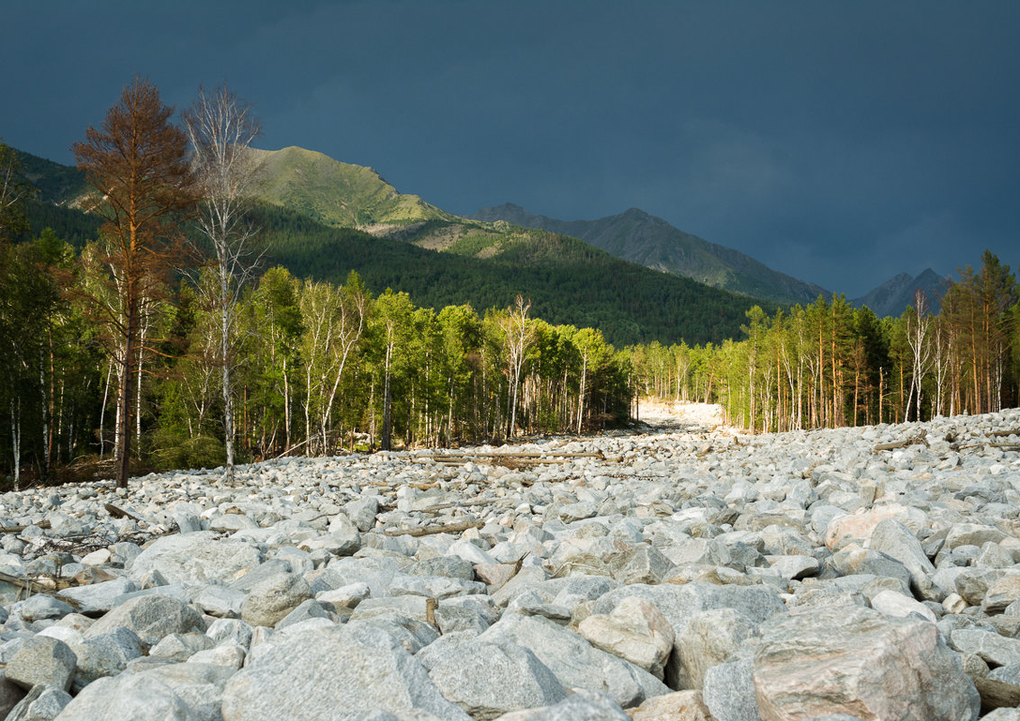 Каменная река - Дмитрий Шкредов