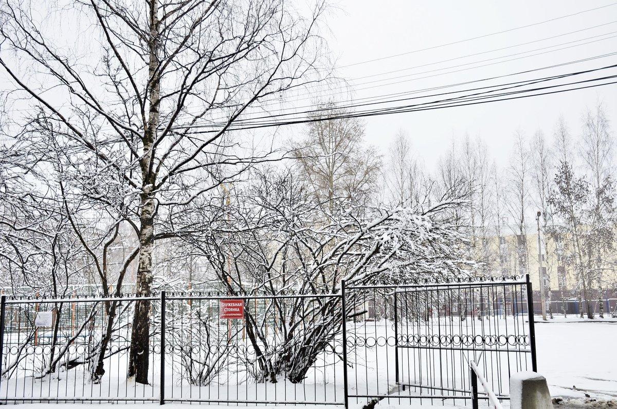 Зима вернулась - Viktor Pjankov