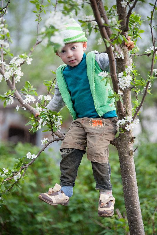 Весна у бабушки - Константин Чаплыгин