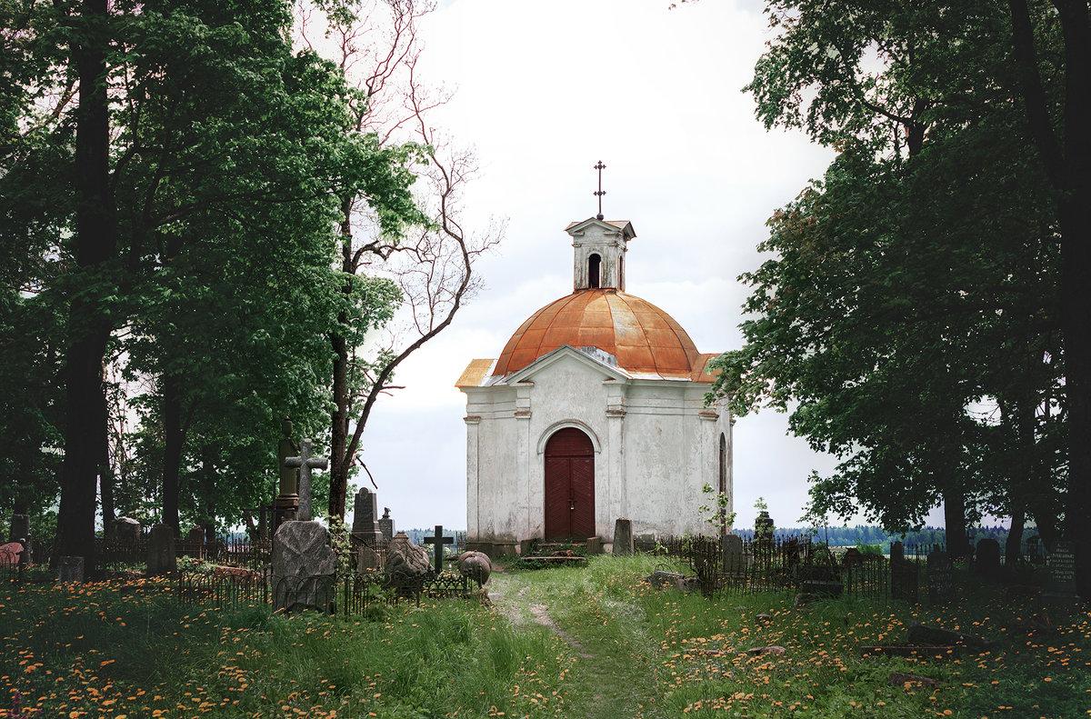 Старое кладбище - Анастасия Заплатина