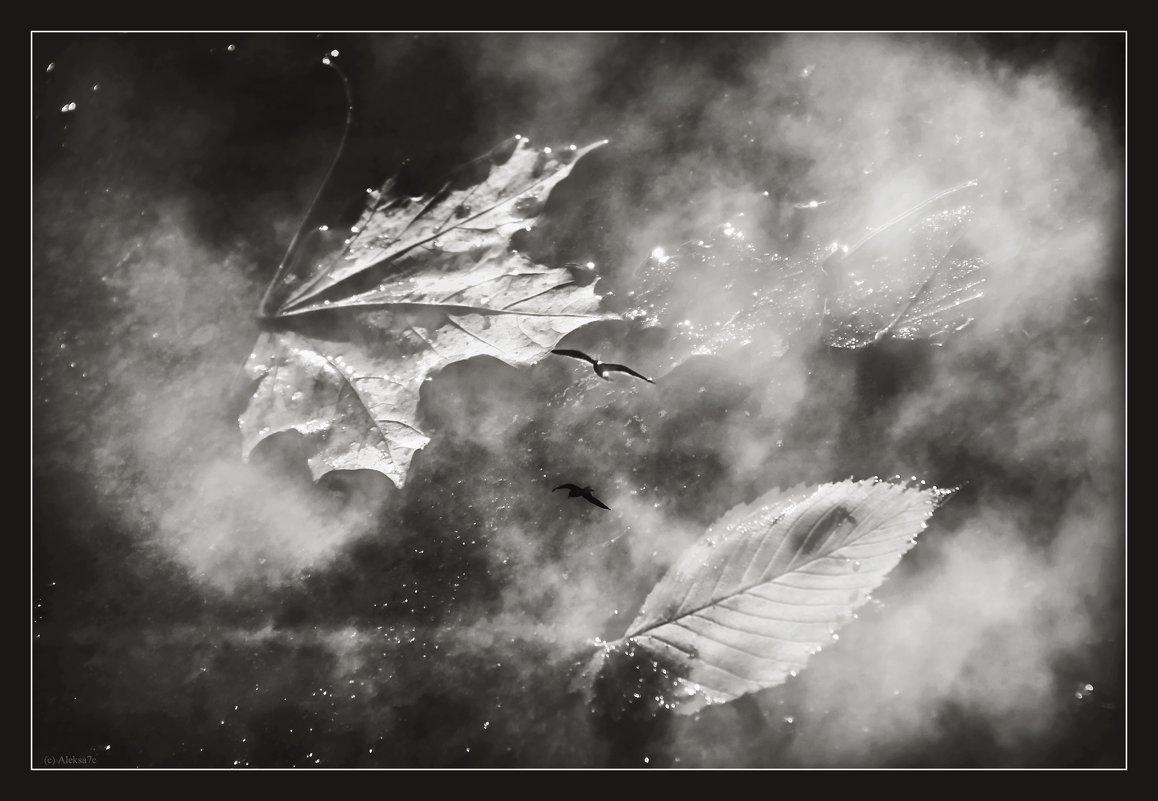 Когда небо в осколках луж... - Александра Бенцман