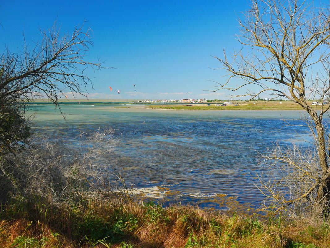 озеро Донузлав  весной - Андрей Козлов