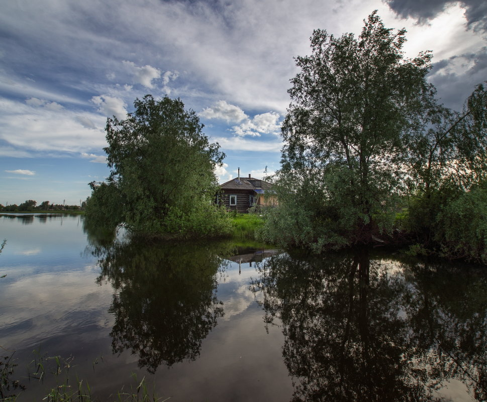 Дом у протоки - Виктор Четошников