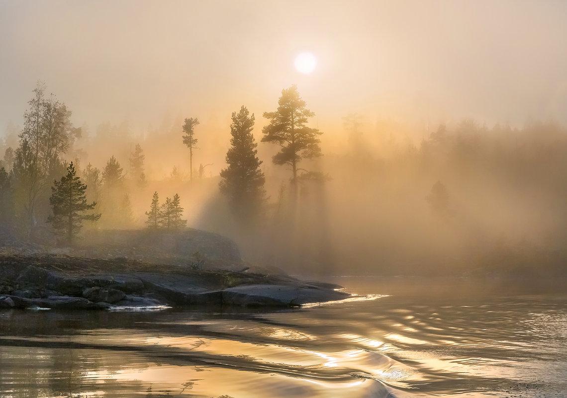 Туманный бархат солнца - Фёдор. Лашков