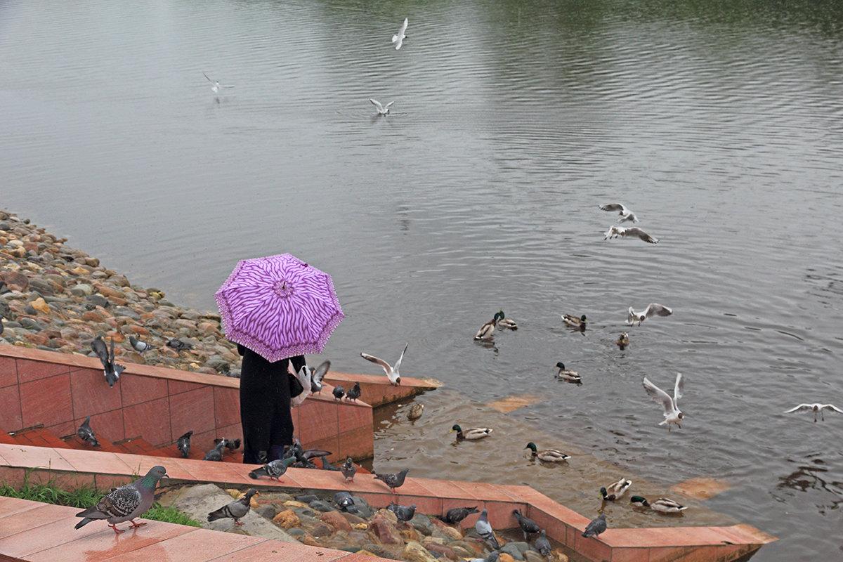 Дождь - Наталья Кузнецова