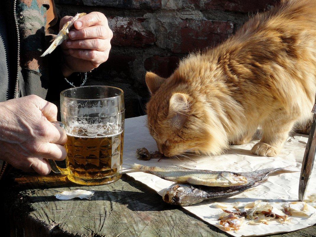 #3 Про пиво. Верный друг - Валерий Хинаки