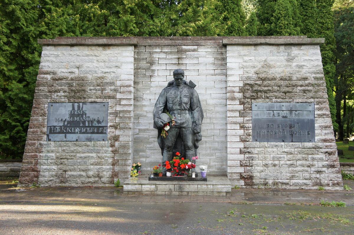 Бронзовый солдат - Елена Павлова (Смолова)