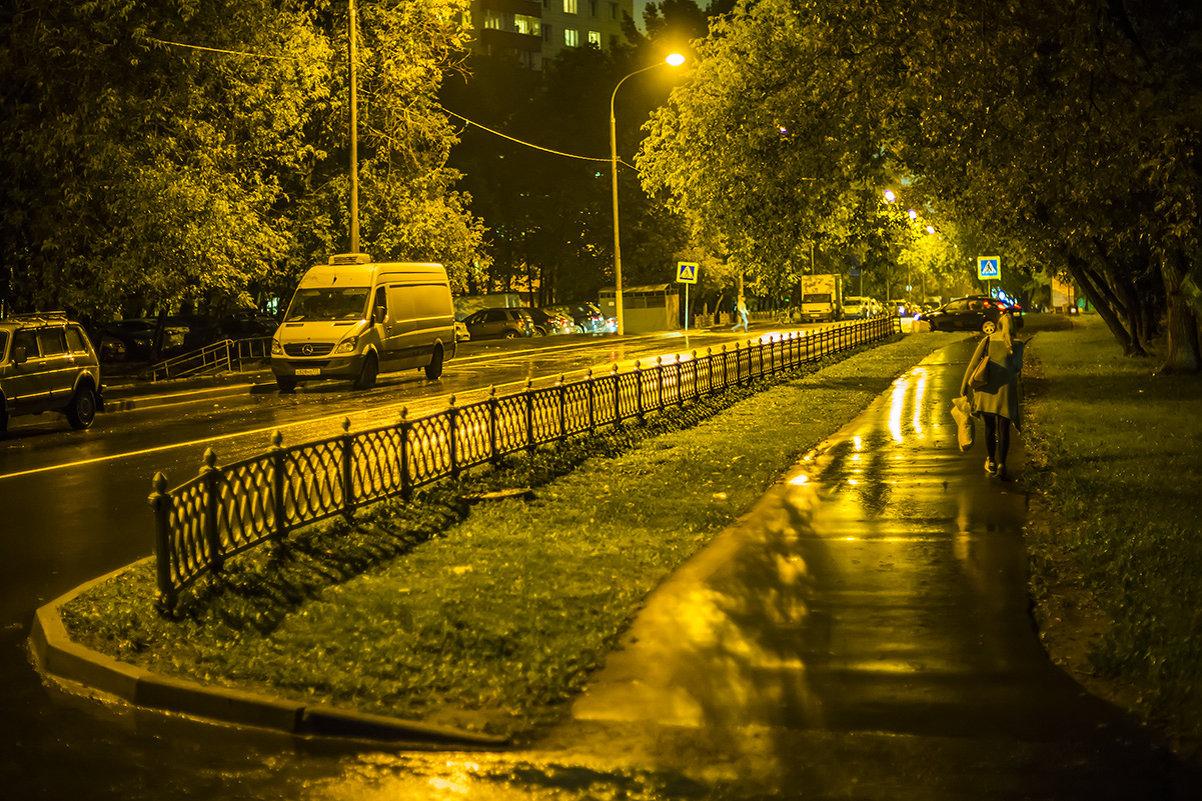 Ночь в Москве - Игорь Герман