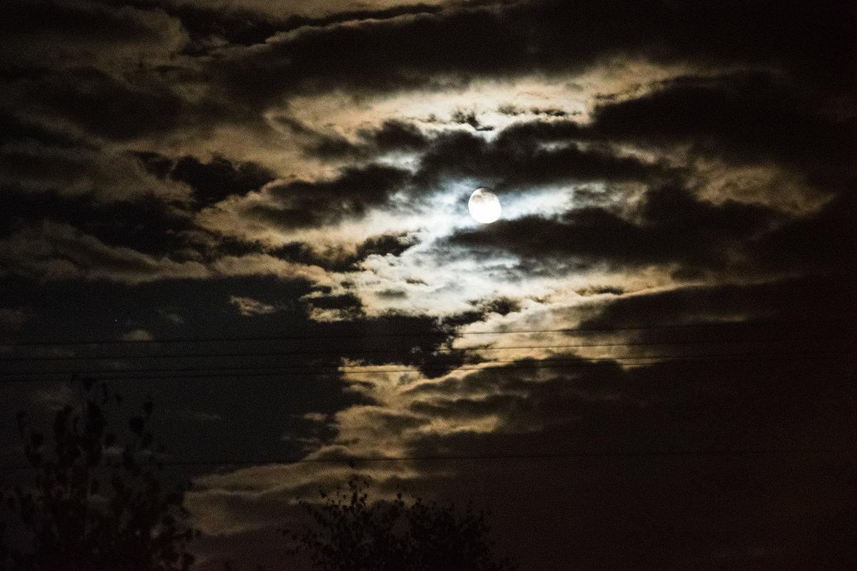 Луна - Максим