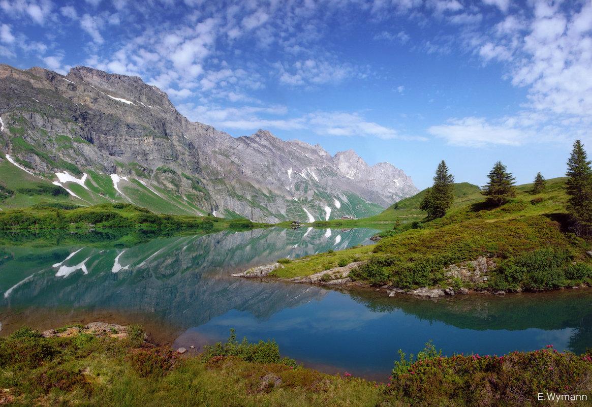 я люблю отражение гор - Elena Wymann