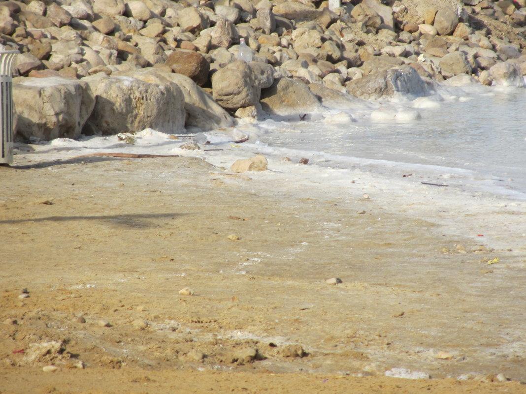 Берег Мертвого моря - Герович Лилия