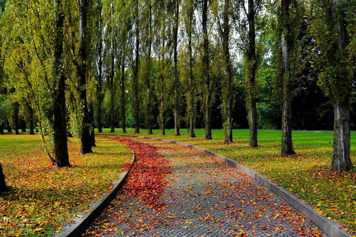 Осенний день... - Nataly ***