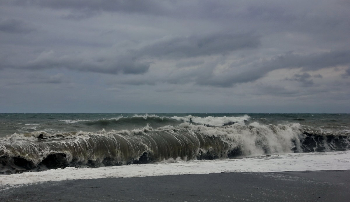 Волны - Виолетта