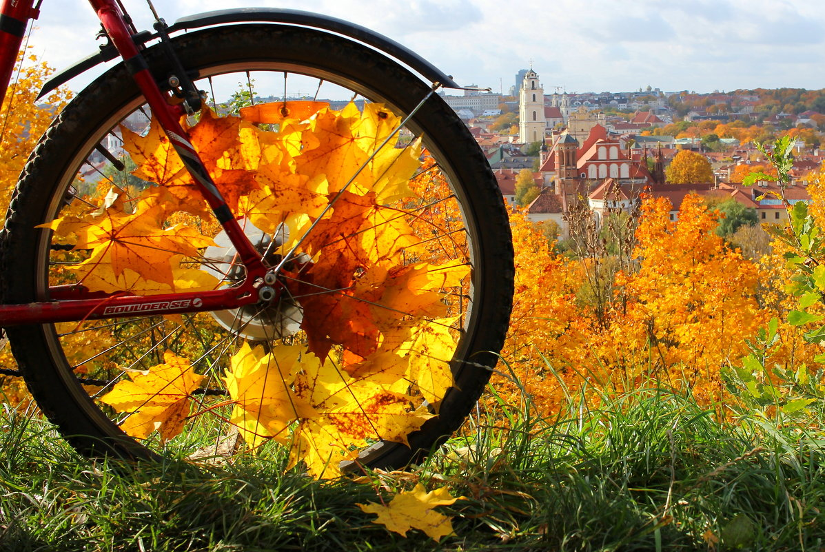 На велосипеде в золотую осень - Semko