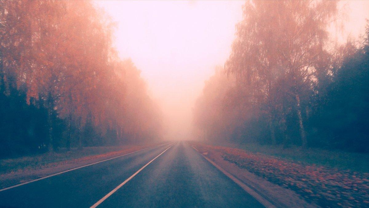 Дорога в осень - alexN alex